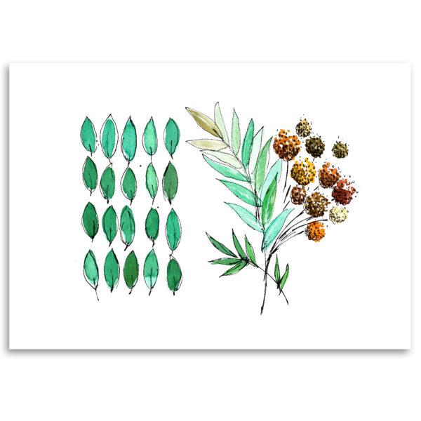 dessin herbes sauvages printemps nature art print affiche décoration murale