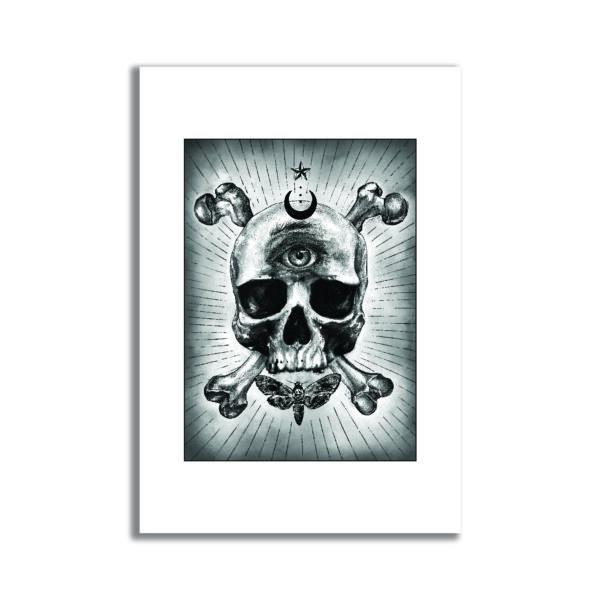 Dessin tatouage tatoo cabinet de curiosité papillon tête de mort crane squelette oeil affiche art print décoration murale